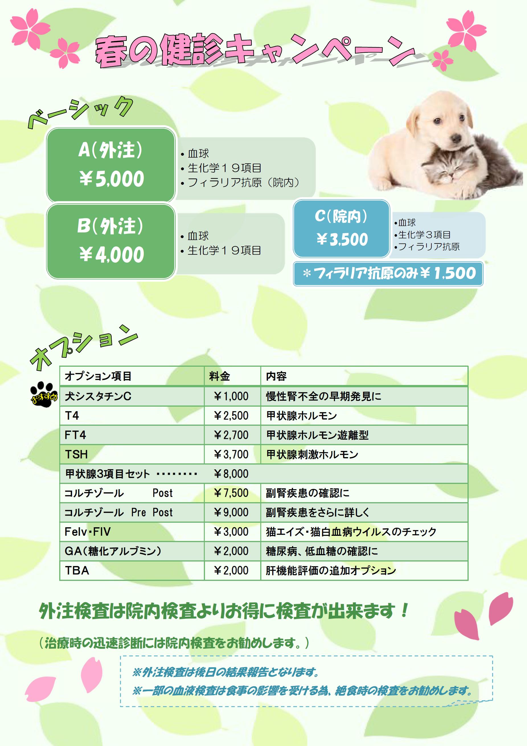 健診キャンペーン-001
