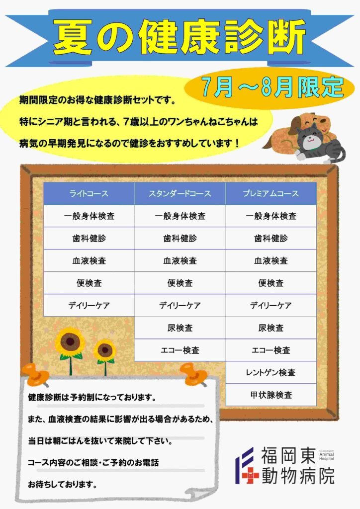 2019夏健診ブログ用